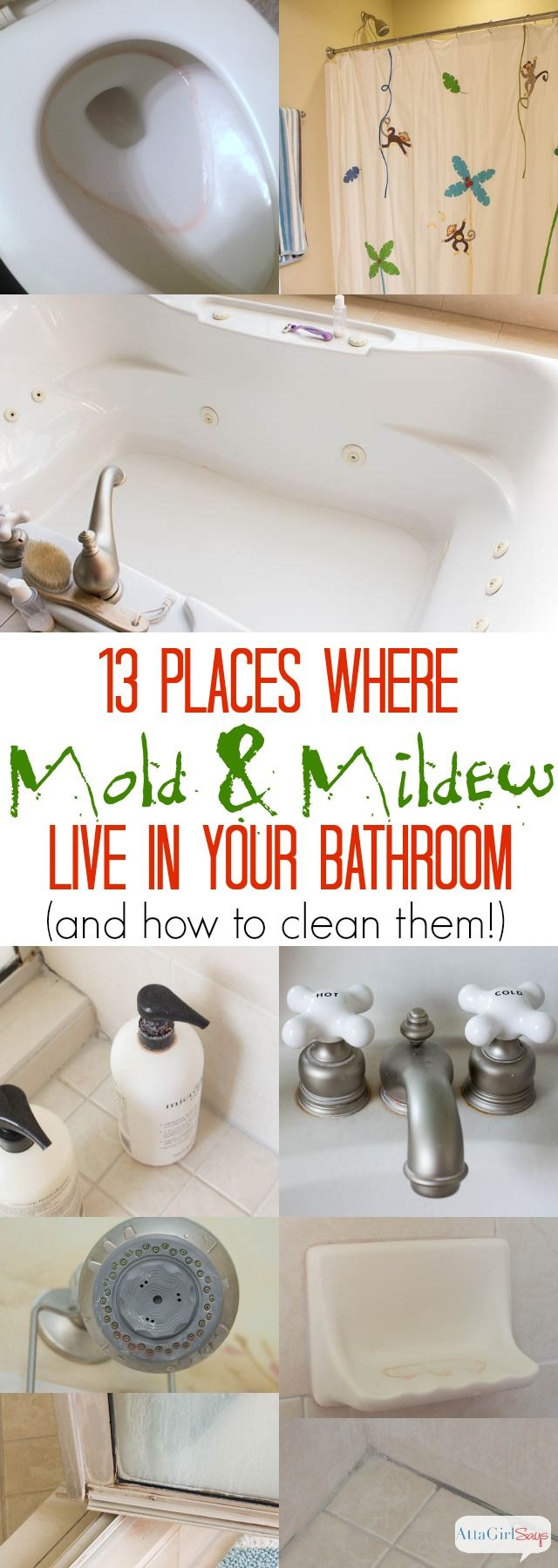 How to clean mold and mildew in the bathroom without scrubbing diy ideas pinterest for How to get rid of surface mold in bathroom
