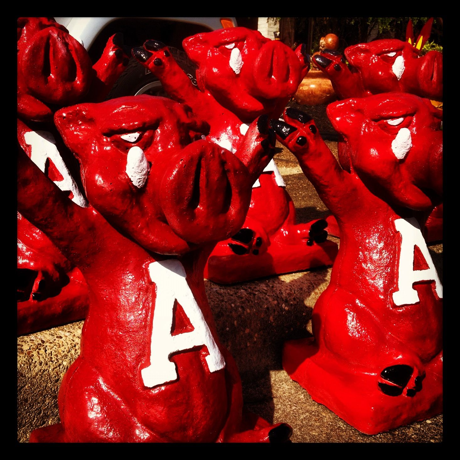Concrete Touchdown Hogs At The Pottery Shop Arkansas Razorbacks Razorbacks Arkansas Football