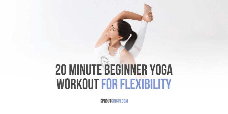 20 Minute Beginner Yoga Workout For Flexibility Beginner