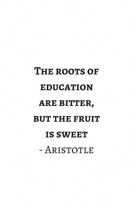 native american wisdom quotes #owlquoteswisdom