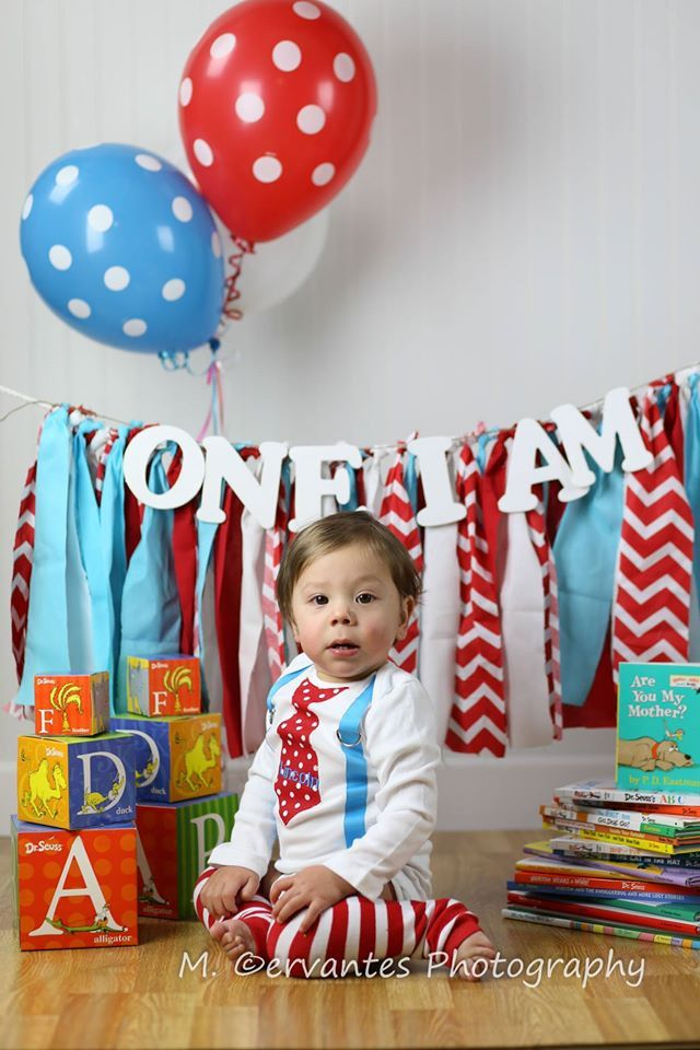 Dr Suess Birthday Boy Outfit Baby Boys 1st Birthday Outfit Dr