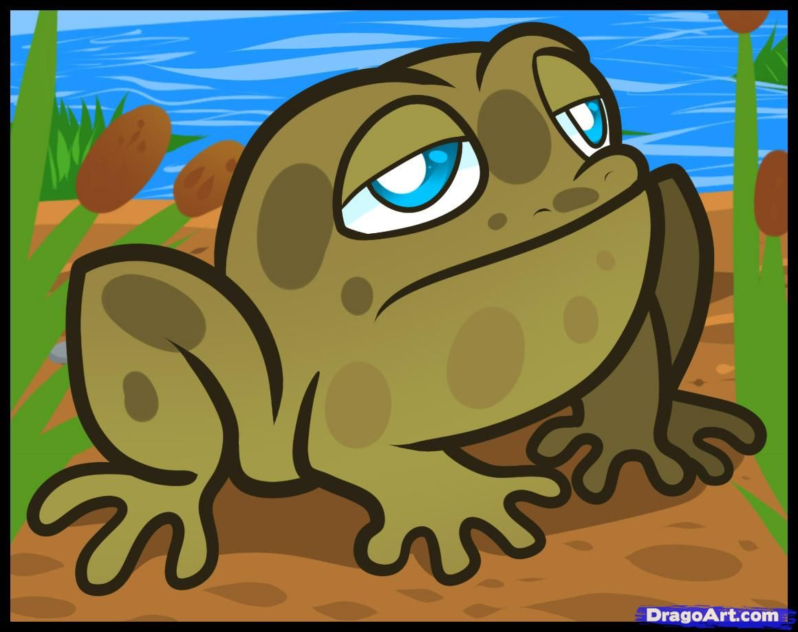 how to draw a toad for kids step by step animals for kids for