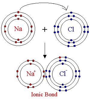 Bohr Diagram Nitrogen Bohr-Rutherford Electr...