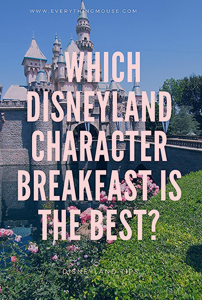 Disneyland Character Breakfast - EverythingMouse Guide To Disney