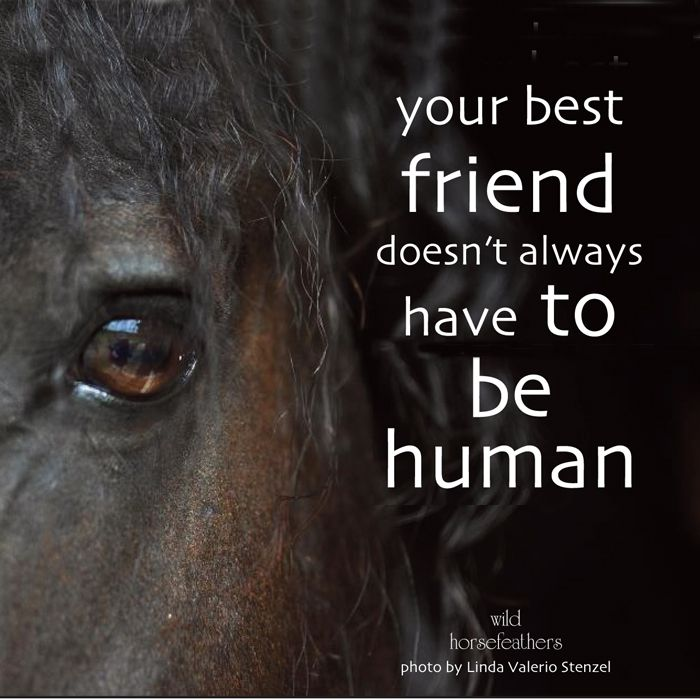"""Best Quotes Good Human Being: """"Your Best Friend Doesn't Always Have To Be Human"""