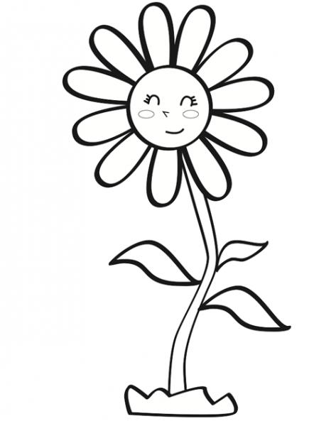 Dibujos De Margaritas Para Colorear Margaritas Dibujo Dibujos Para Colorear Dibujos De Flores