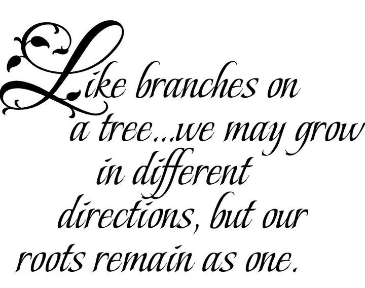 Sibling Quotes Great Family Quote For Photo Wall Displayimagine Tree Branches