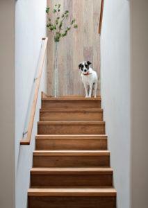 Best Teak Wood Stair Treads Floor Transitions Wood Stair 400 x 300