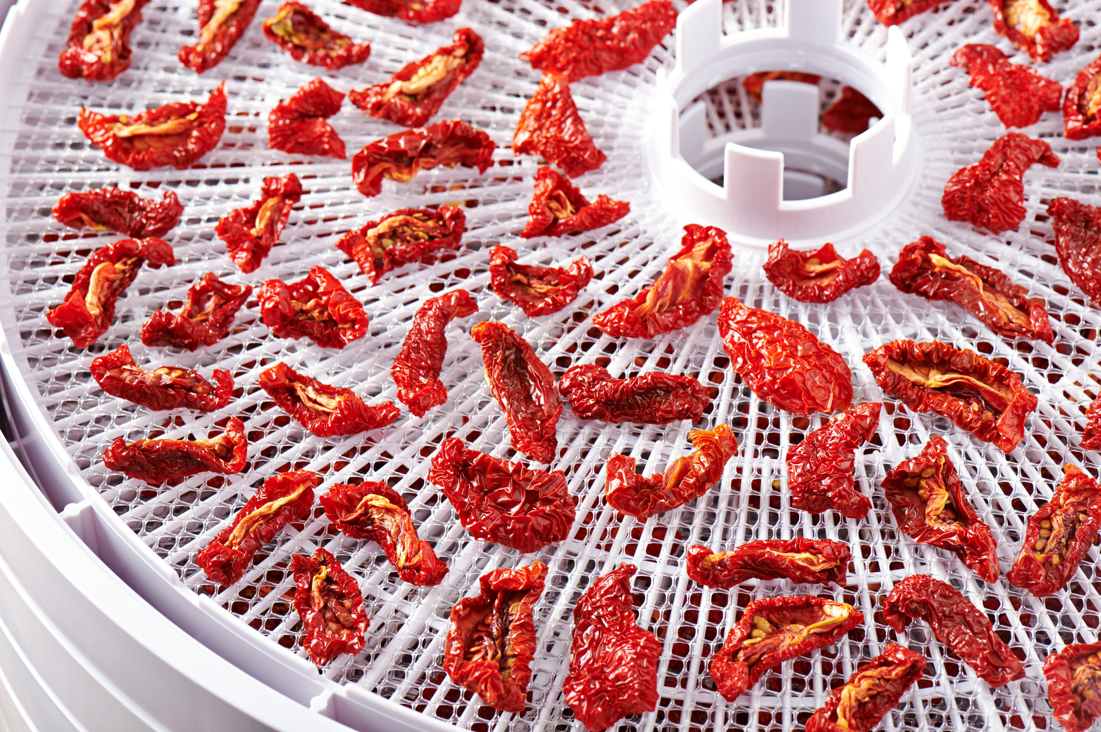 Ronco Food Dehydrator Instructions