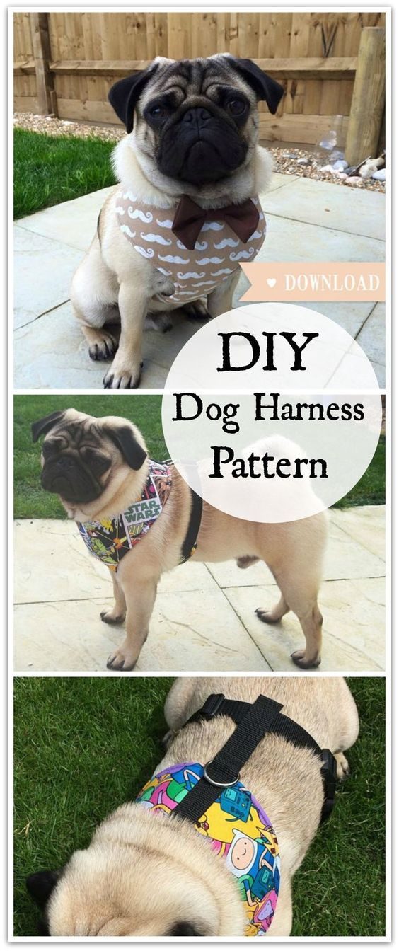 DIY Dog Harness Sewing Pattern and Full Instructions PDF Download ...
