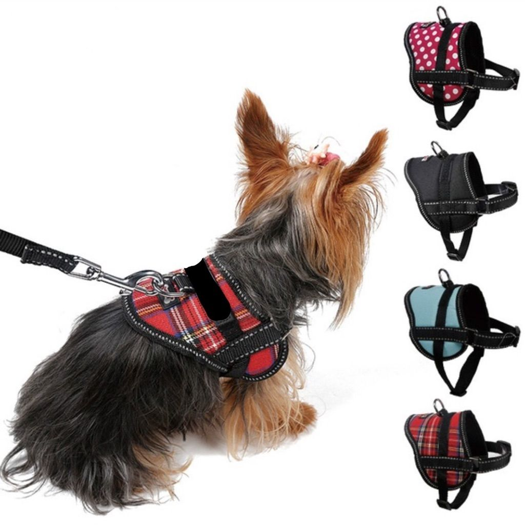 Tiny Dog Harness W Velcro Sign Option Attached Cute Dog