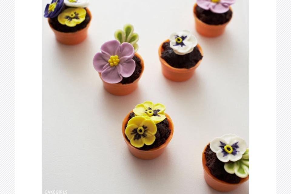 """Adorei esses vasinhos comestíveis da """" Cake Blog """".   Além de lindos, são fáceis de fazer.   Basta esfarelar alguns pedaços de bro..."""