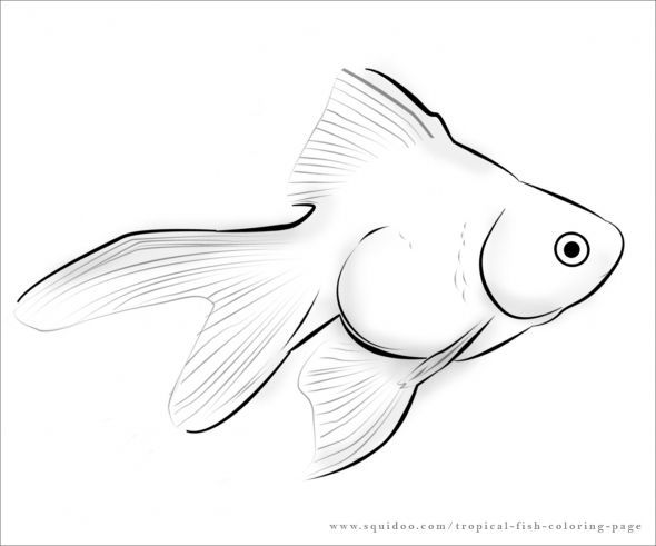 hard coloring pages of fish - photo #31
