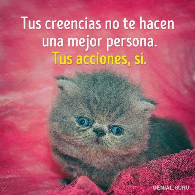 Muy Cierto | Cute Quotes, Spanish Inspirational Quotes