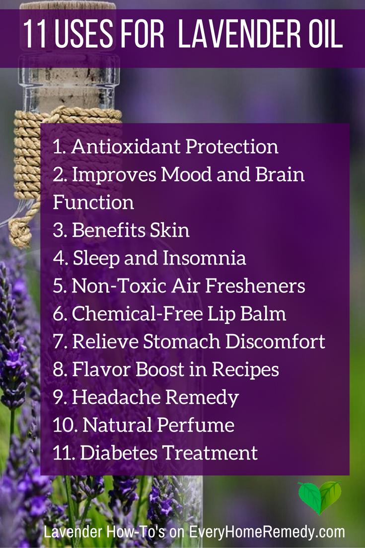 Best 25+ Benefits of lavender ideas on Pinterest ...
