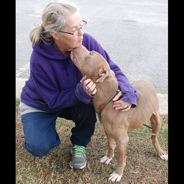 Smithville: Pit bull ordinance against the law | #statesman