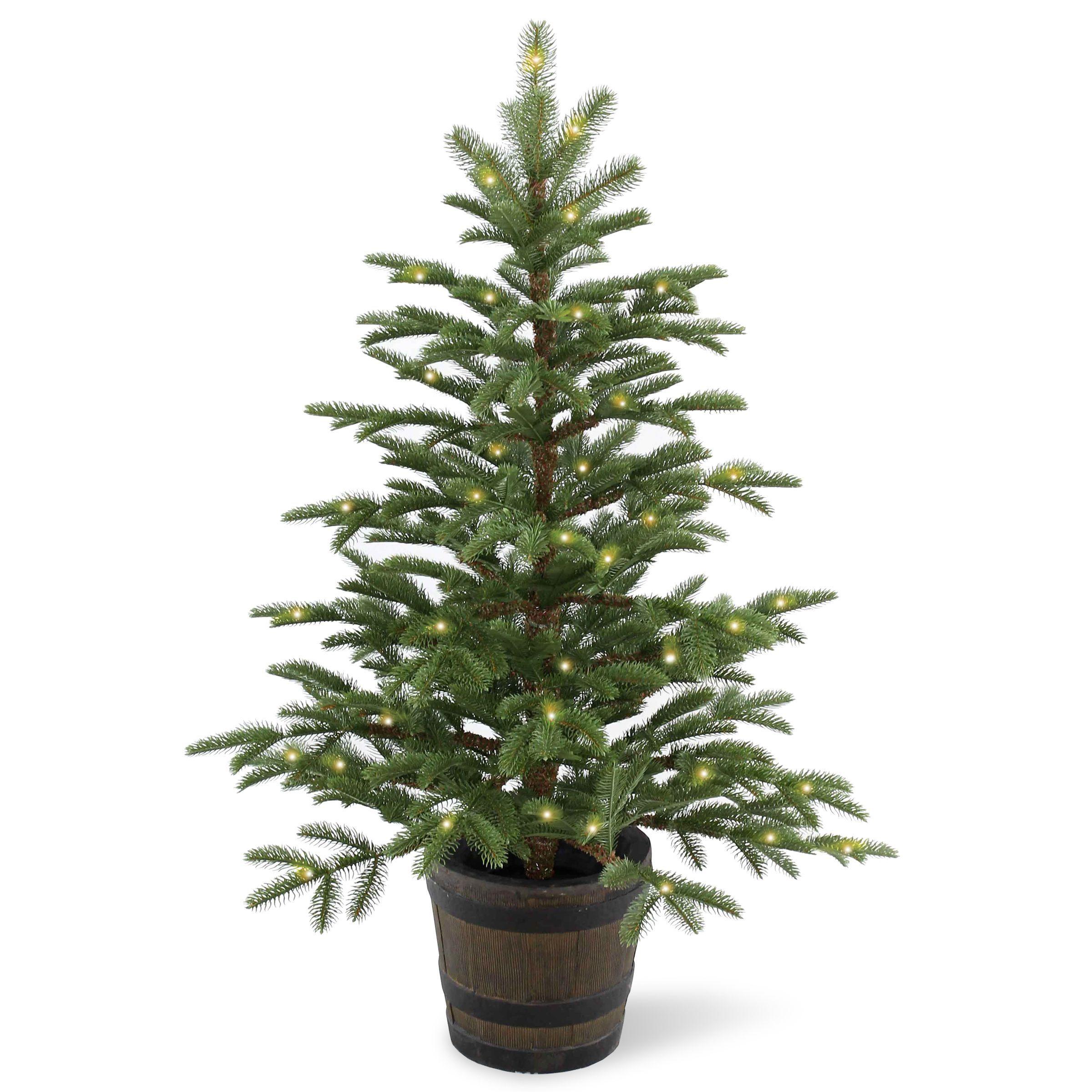 Feel Real Norwegian Spruce Medium Unlit Christmas Tree  A