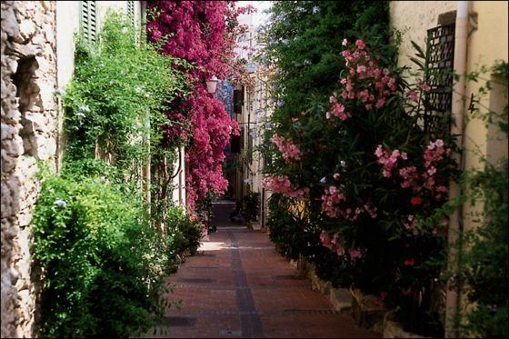 Les ruelles du vieil Antibes | Notre belle région | Pinterest ...