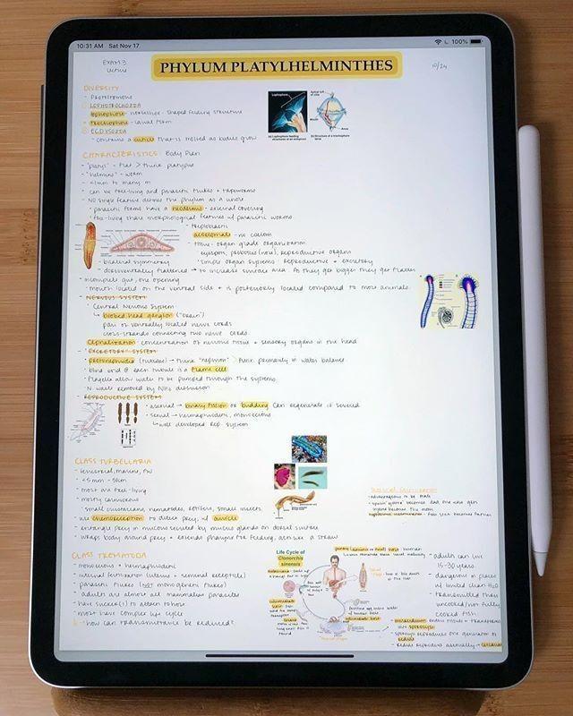 tablet ipad study motivation Study apps, Study