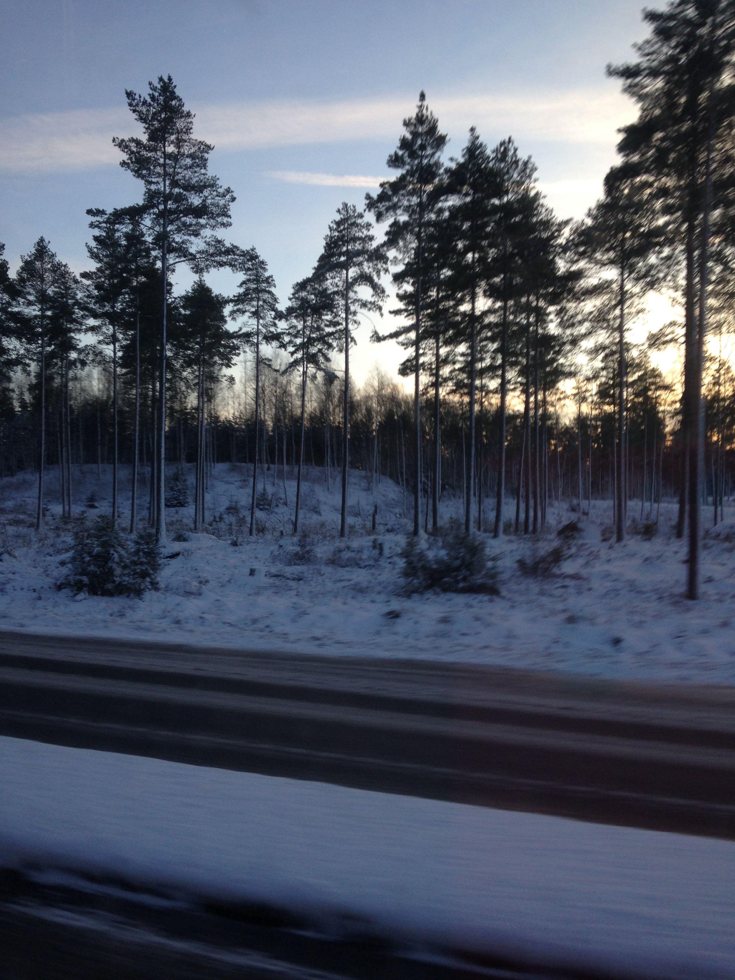 Pin By Aija Tamsi On Turku Turku Outdoor Snow