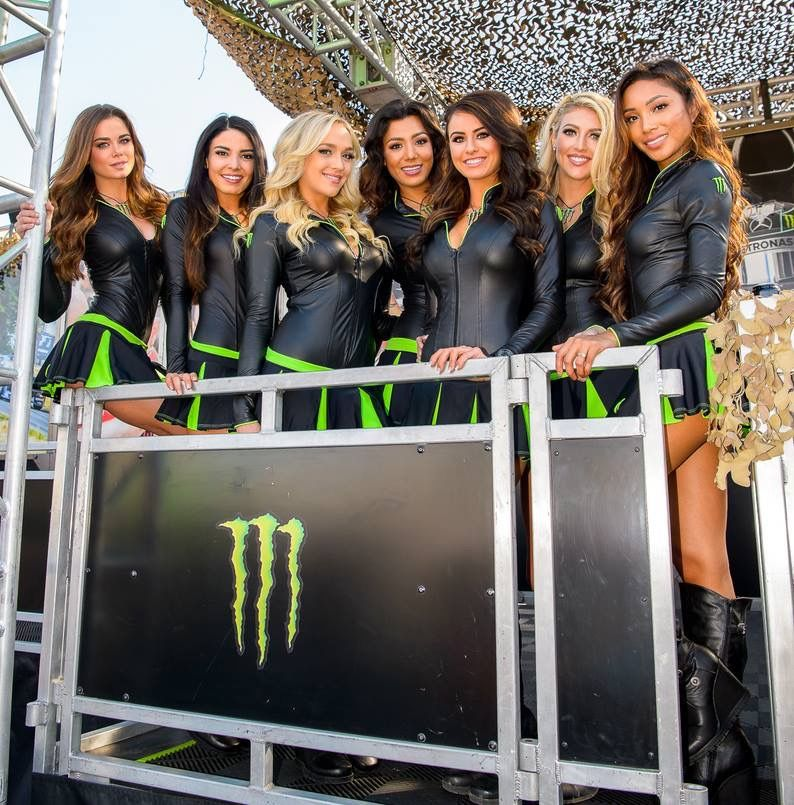 Pin by Some Guy on Grid Girls | Monster energy girls