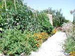 Levendi's Estate Ithaca, Greece : Levendi's Cottages Virtual Tour - About Levendi's