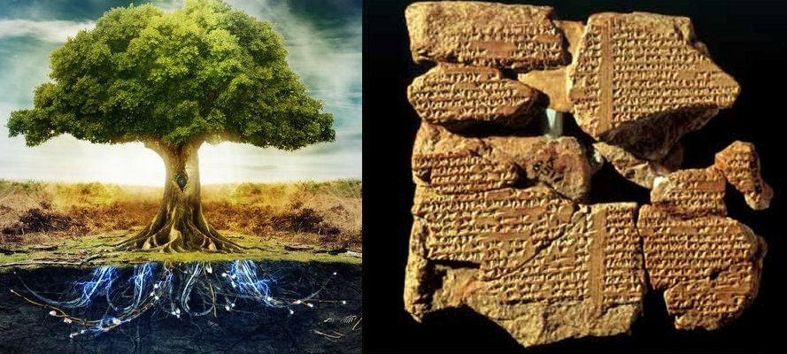 MessageToEagle.com – Our quest for the legendary Tree of Life takes us to a place in Mesopotamia that is sometimes referred to as the Grove of Eridu. The Grove of Eridu is one of the most ancient forests often mentioned in Assyrian tablets. According to Babylonians the Garden of Eden, where the legendary Tree of Life …