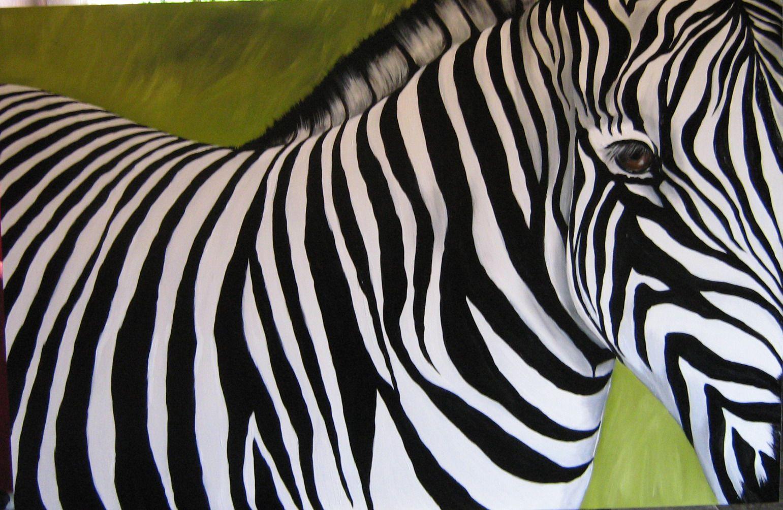 zebra pictures | Postado por Mahaylla às11:40 domingo, 22 de maio de 2011