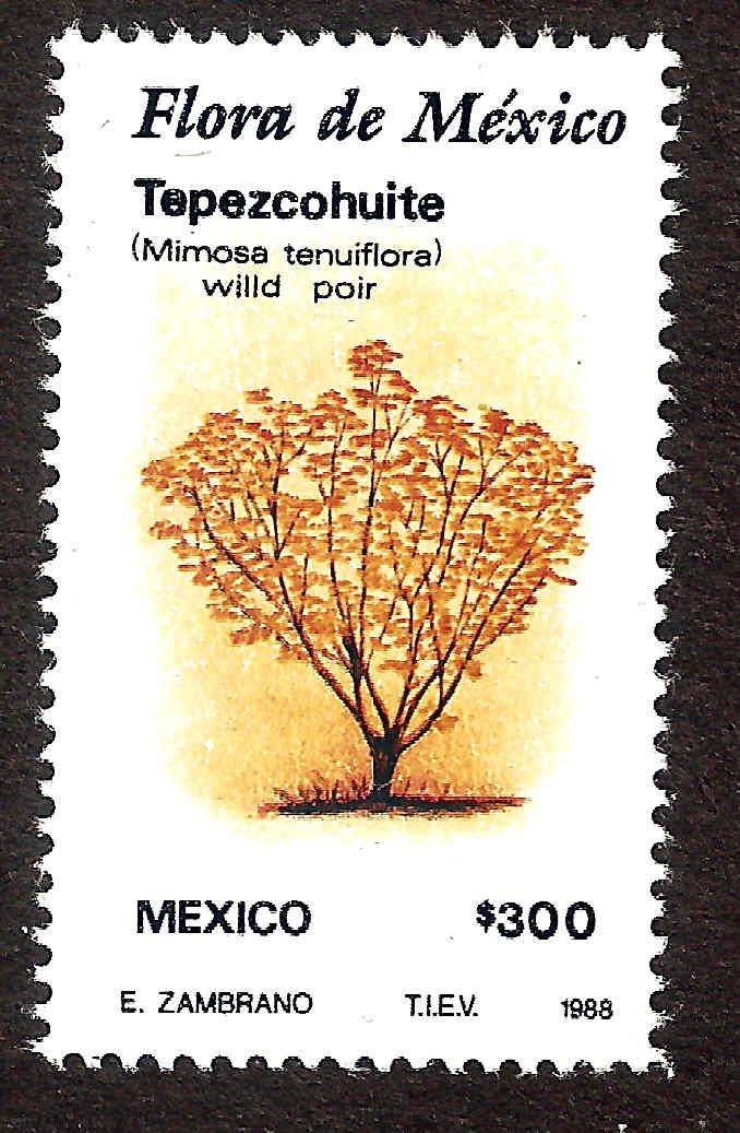 Mexican unused stamps Flora de Mexico, these stamps are