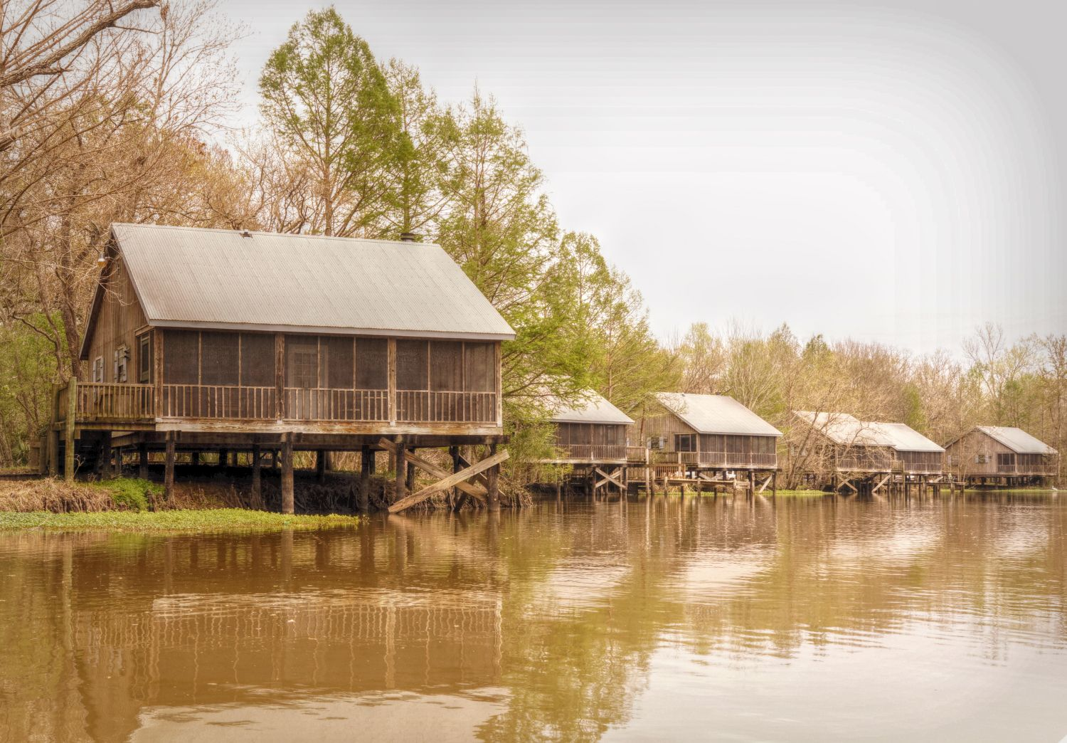 Bayou Camps At Lake Fausse Point State Park With Images State
