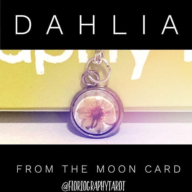 in floriography tarot the moon card is representedthe