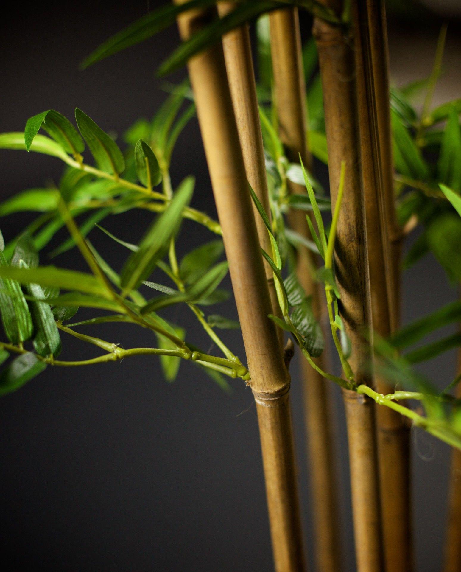 Pianta artificiale Bamboo