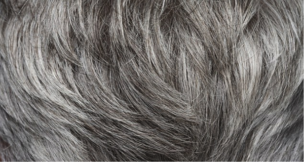 Do You Have Gray Hair Here Is How You Will Get Back Your