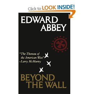 beyond the wall essays from the outside amazon co uk edward  beyond the wall essays from the outside amazon co uk edward