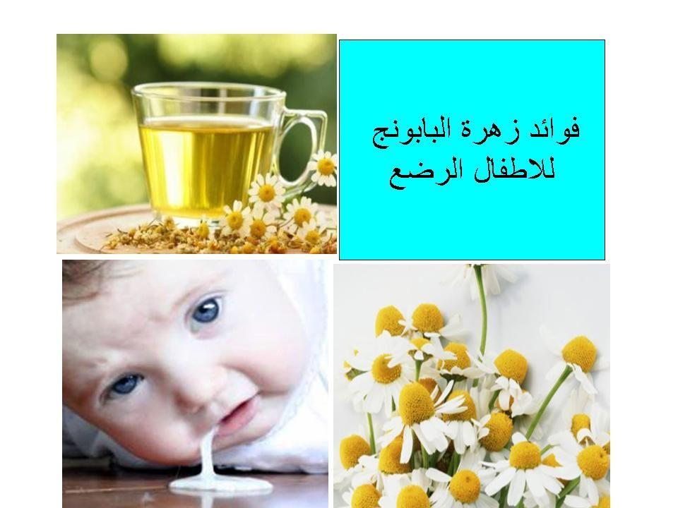 فوائد زهرة البابونج للاطفال الرضع Blog Blog Posts Food