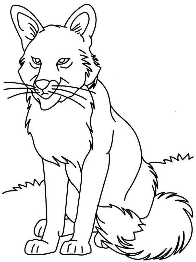 Grey Wolf Coloring Pages From Animals Coloring Pages Category
