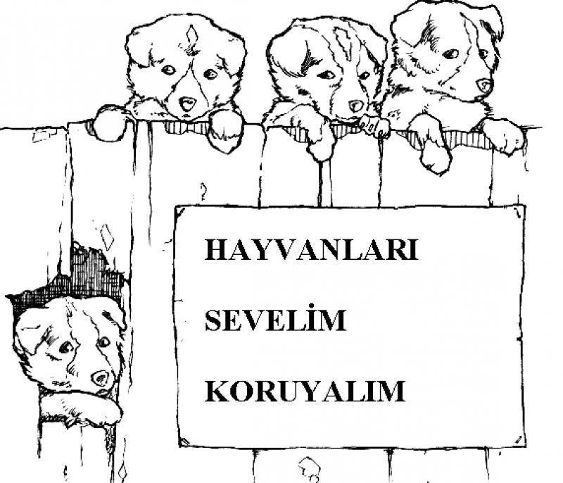 Hayvanları Koruma Günü Boyama Sayfalari 2