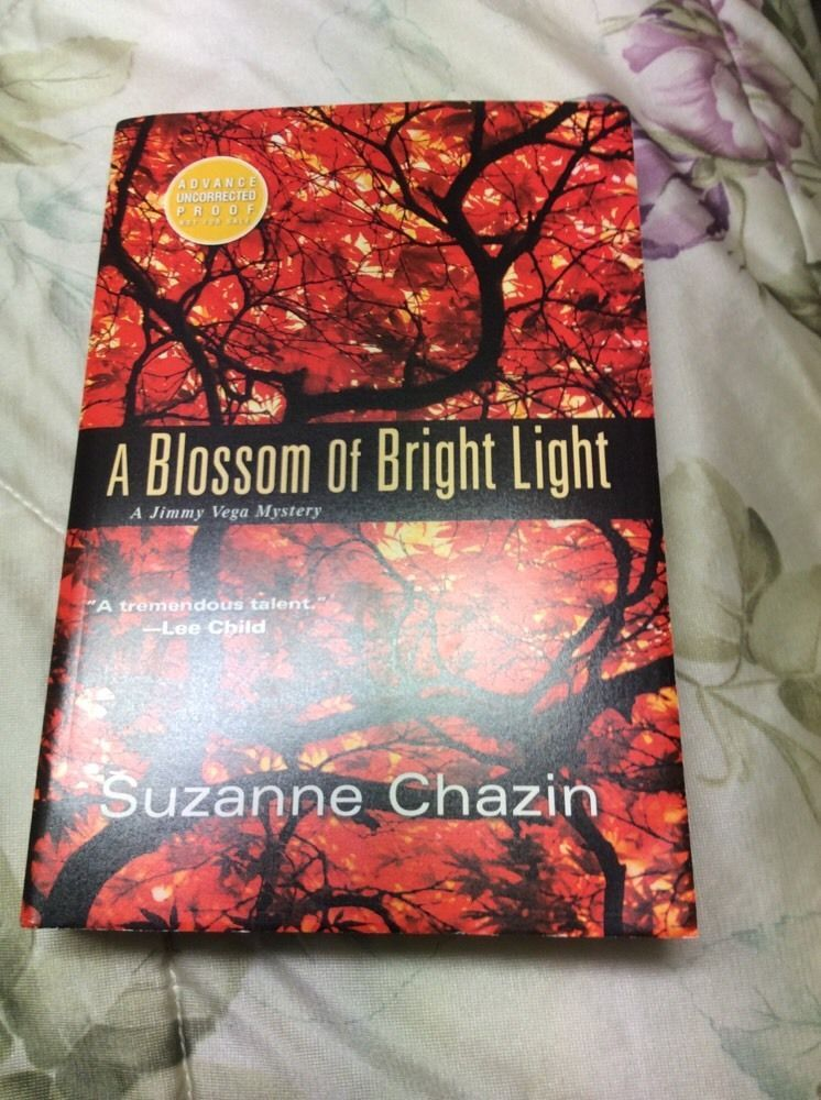 Bright Light Books Gorgeous A Blossom Of Bright Lightsuzanne …  Books Fiction And Review