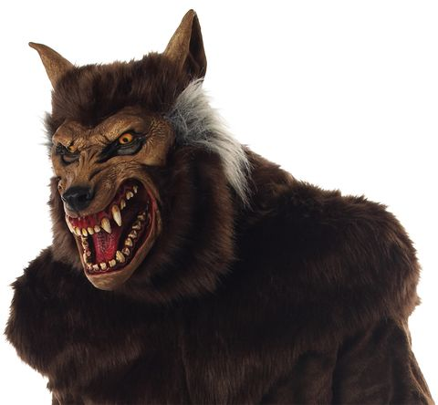 ULTRA DELUXE WEREWOLF Mask Adult Wolfman | Lloyds Halloween Masks ...