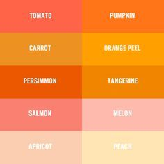 236 236 pantone Shades of orange colour chart