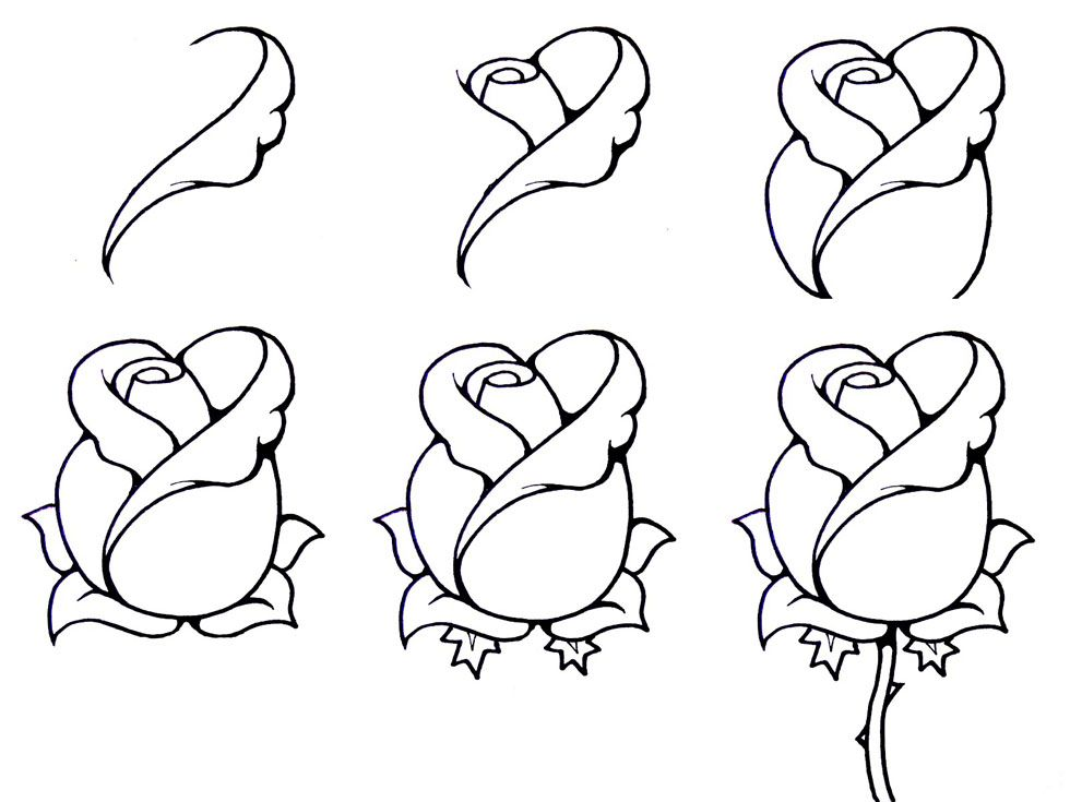 Lotus flower drawing step by step wallpaper doodles - Comment dessiner un lotus ...