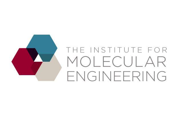 Logo design - Institute of Molecular Engineering