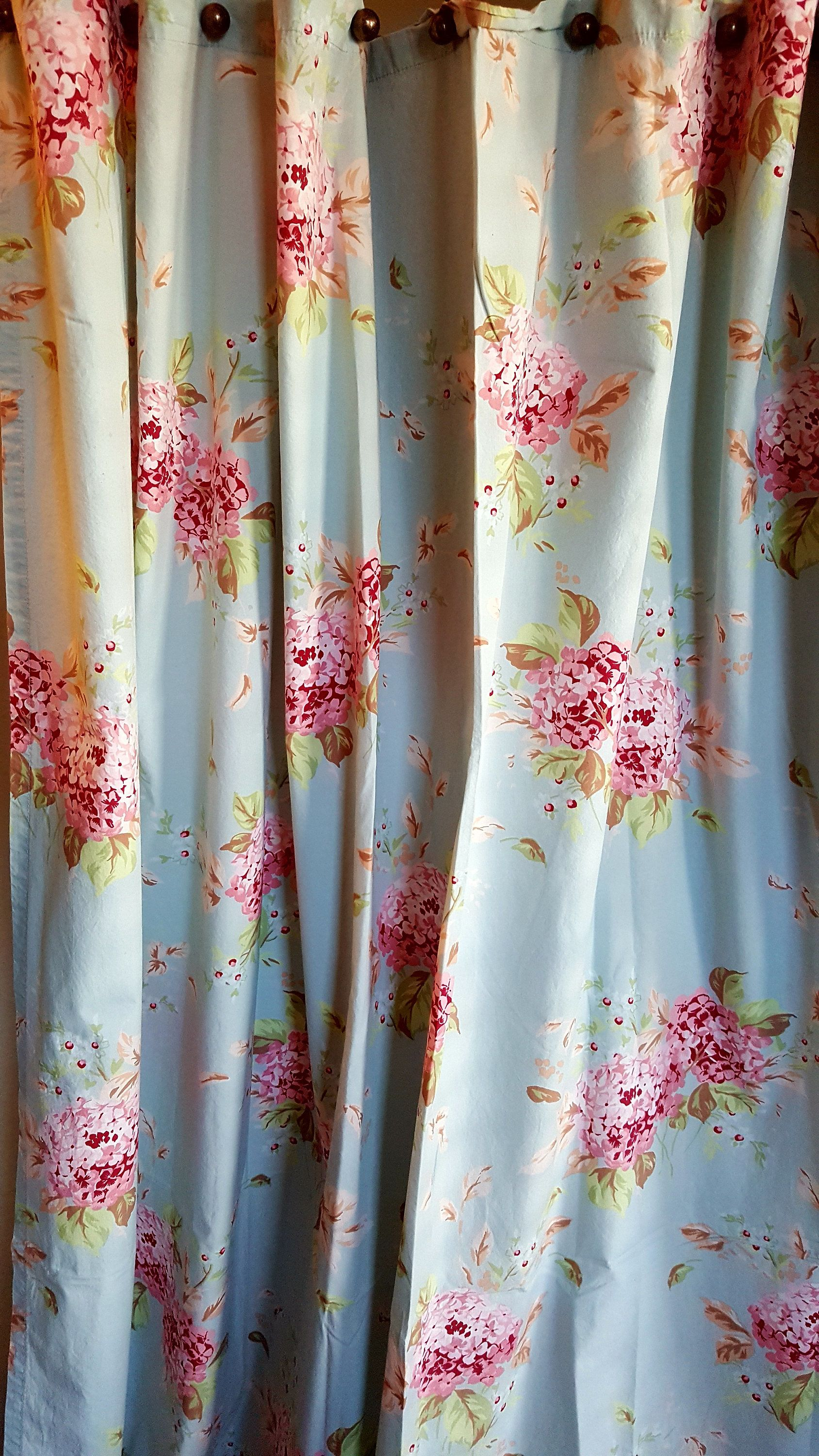 SHOWER CURTAIN Rachel Ashwell Simply Shabby Chic HYDRANGEAS Super Pretty Ruffled Bottom Great Condition By BeautyFromThePast On Etsy