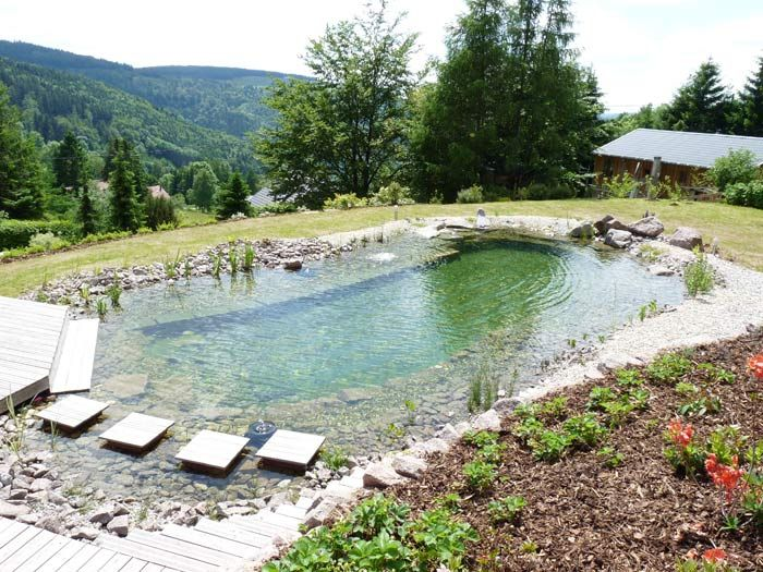 Piscine Naturelle En Alsace  Jardin    Swimming Pools