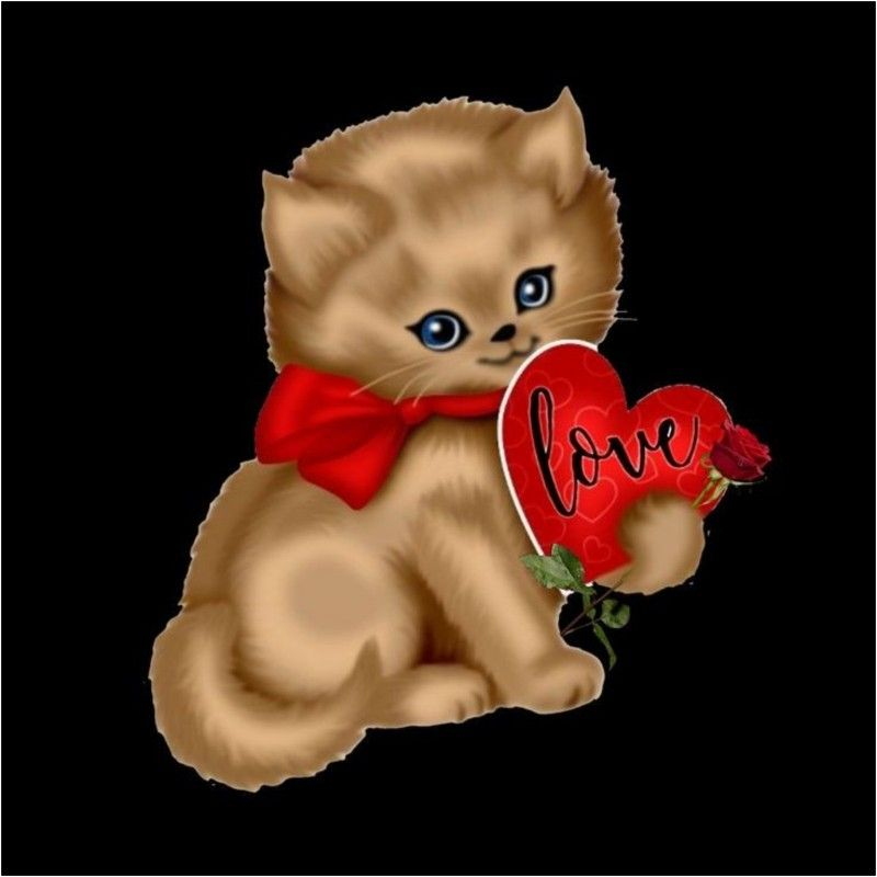 Pin By Jolie Creation On Cat In 2020 Baby Animals Cute Animals Cat Drawing
