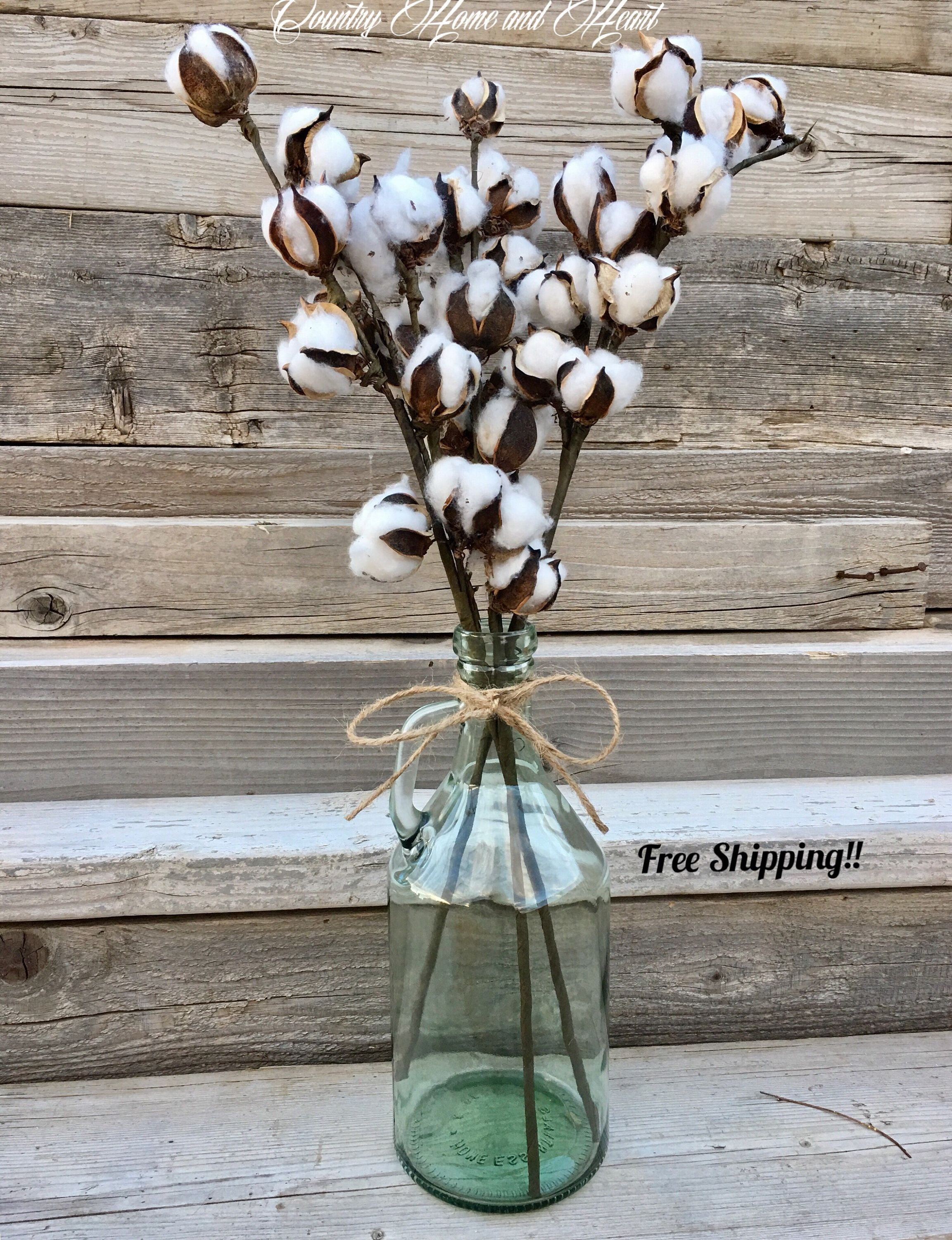 Large Jar With Cotton Stems Cotton Boll Decor Cotton Strens In A