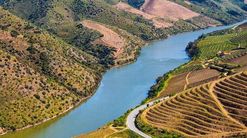 """O turismo das vinhas. Há agora uma """"Grande Rota"""" a unir dois pedaços do Douro - Renascença"""