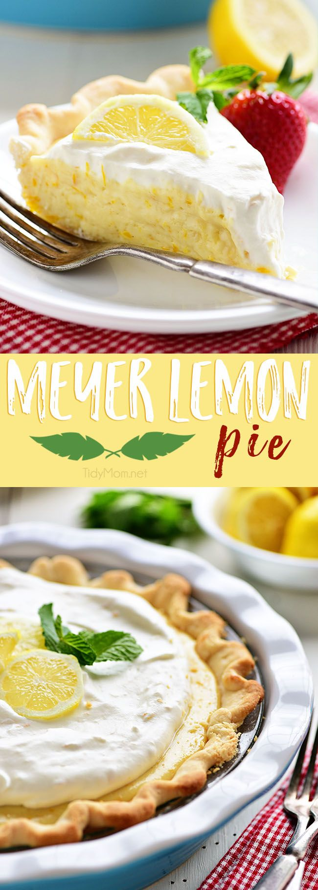 This Meyer Lemon Pie packs a ton of sweet lemon flavor with a fluffy texture. A simple homemade dessert perfect for spring. The pie is not overly sweet and has plenty of citrus love all the way through to the homemade whipped cream on top! Get the full printable recipe at TidyMom.net
