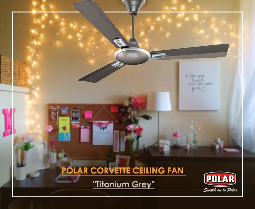 Polar Brings To You Two Tone Metallic Colour Ceiling Fan With