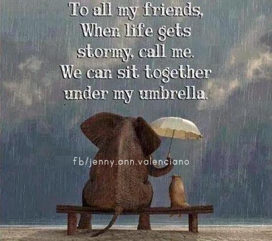 LOVE THIS, TRUE FRIENDS